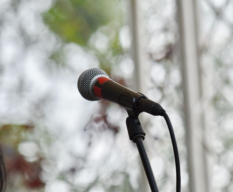 Guida ai microfoni con migliori prestazioni: modelli, dettagli tecnici e prezzi